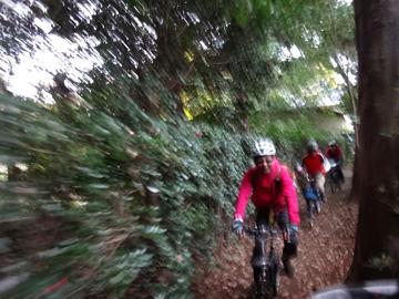 自転車の 自転車 千葉ニュータウン : ... 折り畳み自転車でサイクリング
